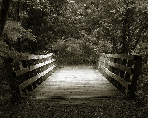Bridge | by eqqman