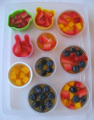 Juice gelatin fruit cups for packed lunches | by Biggie*