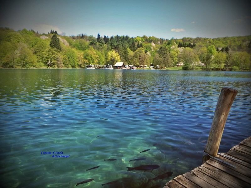 croatia-Plitvice LakesNational Park -克羅地亞-16湖國家公園-17docintaipei (107)