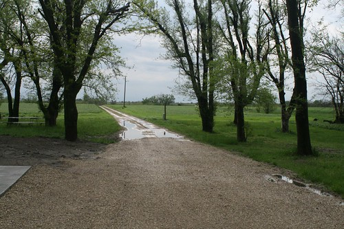 Our driveway after some rain | by prairiecode