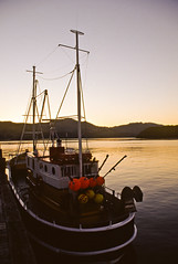 Fishing Boat | by DarrynSantich