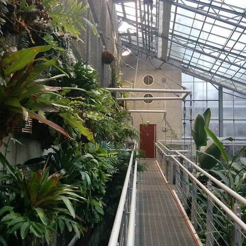 Cloud Gardens (3)