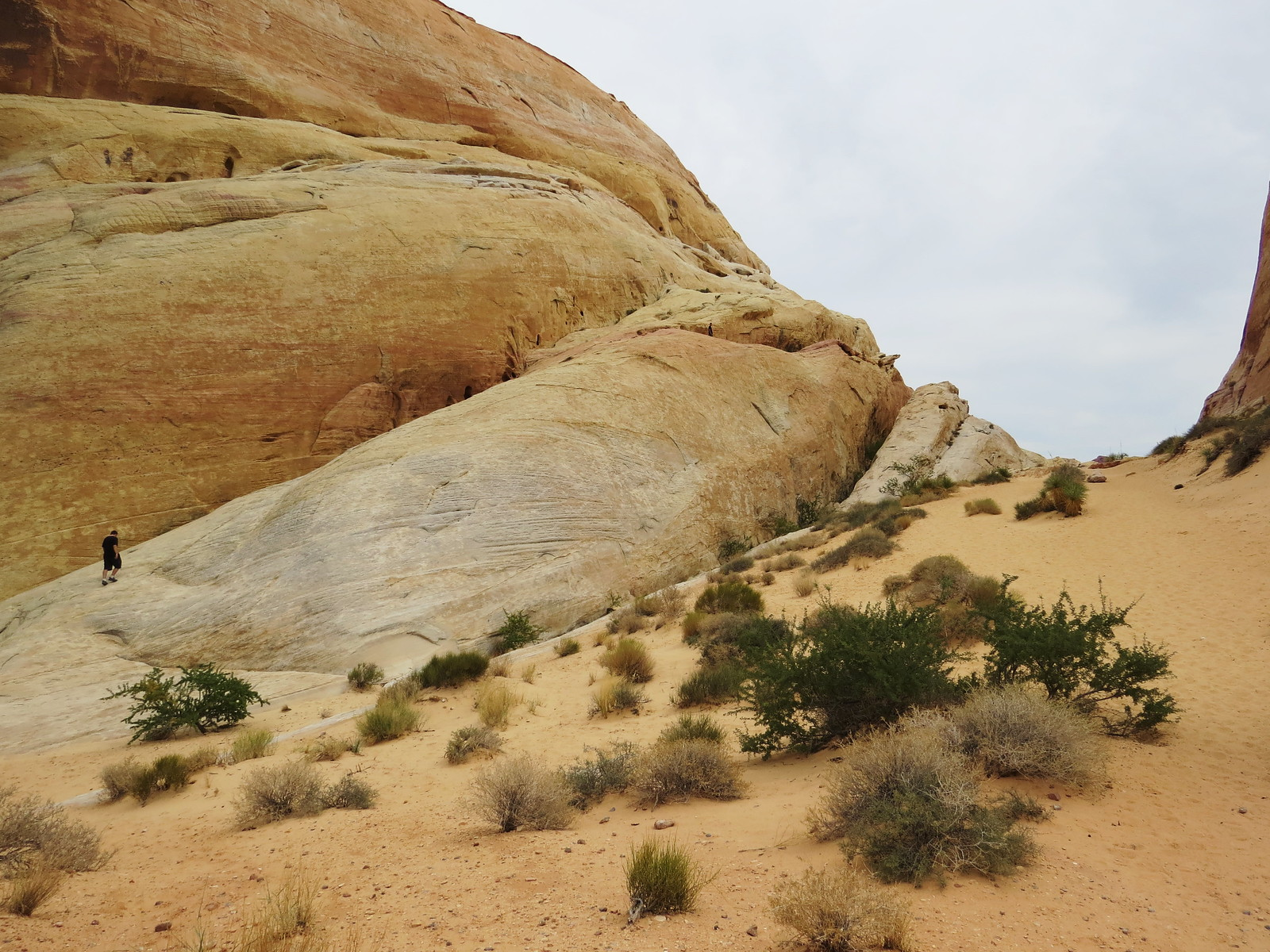 The White Domes, Valley of Fire, Nevada