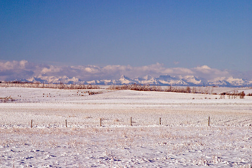 Rockies from Carstairs | by Chris & Lara Pawluk