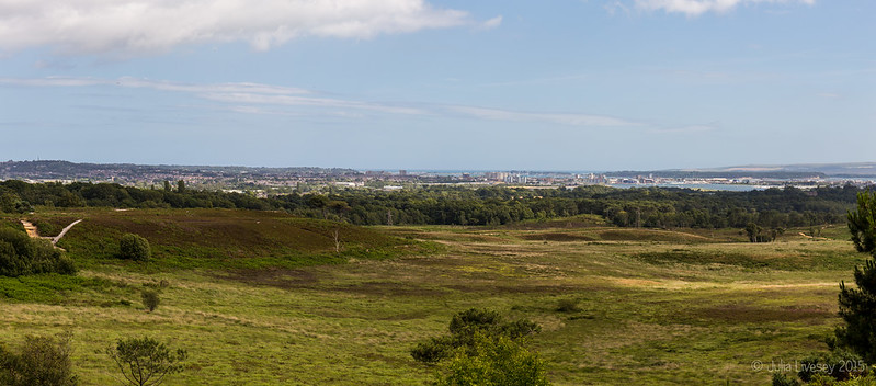 Looking out over Poole and Upton Heath