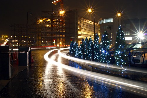 Trees and Lights | by Donncha Ó Caoimh