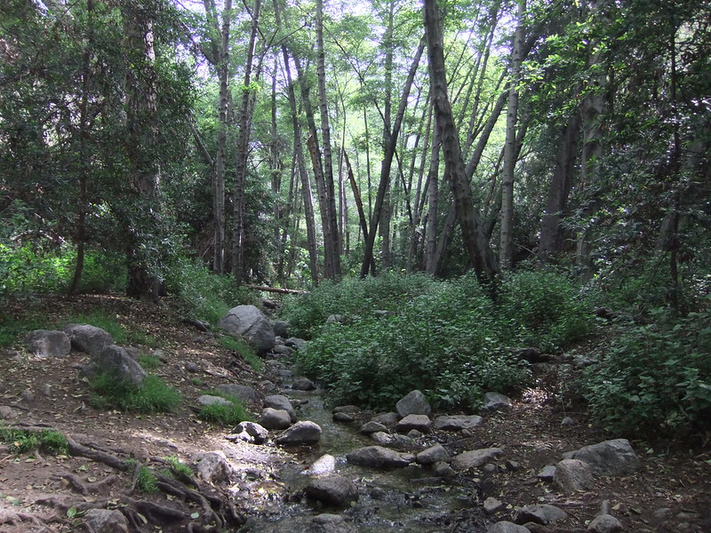 Monrovia Canyon, San Gabriel Mountains, Los Angeles County, Southern California