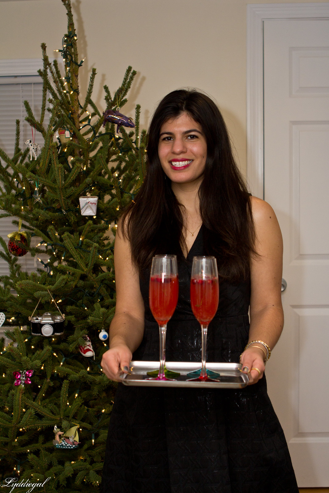 thym liqueur cranberry cocktail-1.jpg