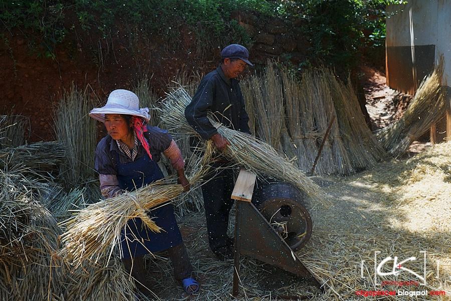 Yunnan_0121