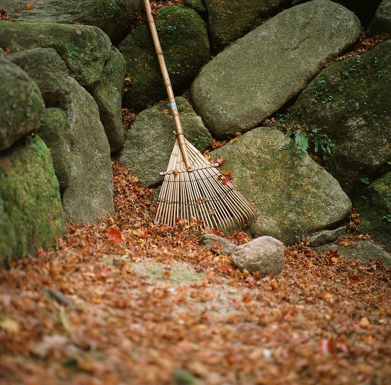 仁比山神社|紅葉