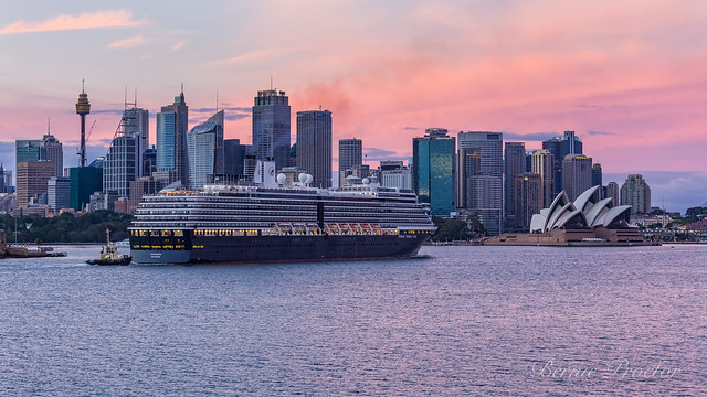 Noordam Sydney Harbour-9797