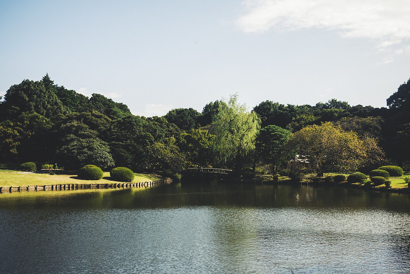 shinjuku national garden
