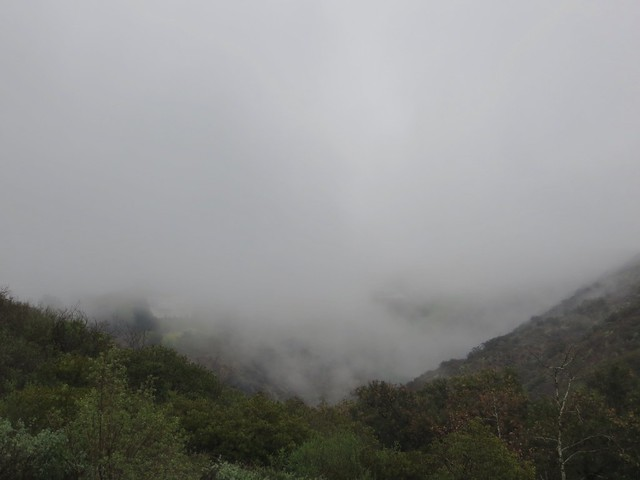 mist decends