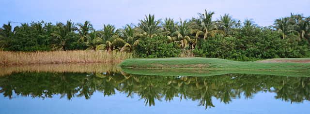 Reflection on a pond in Colimilla across the lagoon from Barra de Navidad on Mexico's Pacific coast
