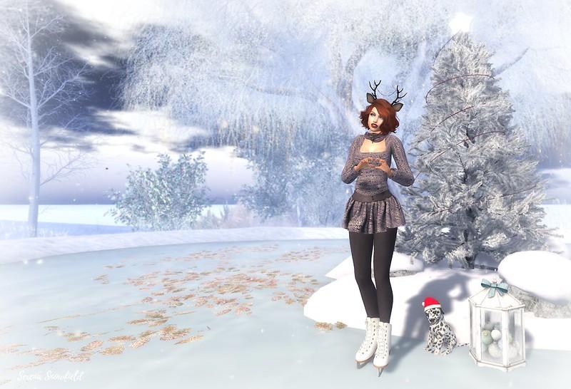 skater8_001f