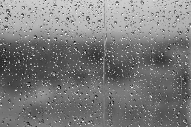 Rain-1-7D1-122416