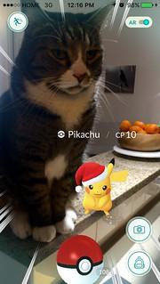 Watson and Pikachu
