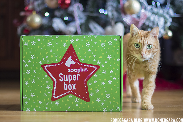 Zooplus Superbox perro
