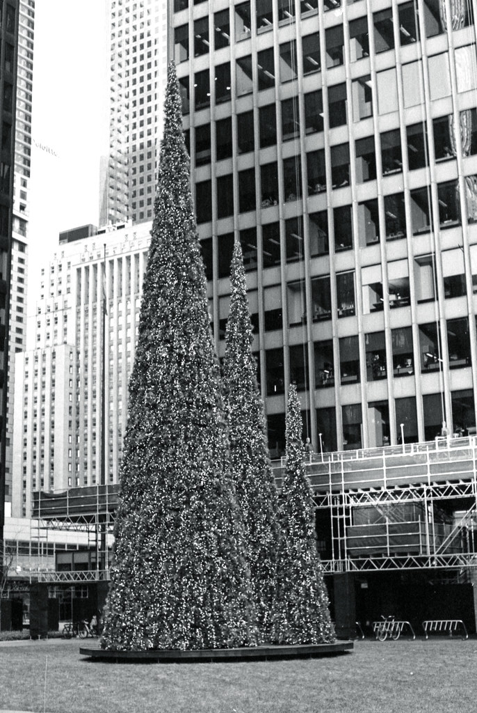 Bay St. Christmas Tree_