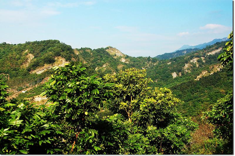 新寮山山腰東北展望,右尖突山頭為三腳南山