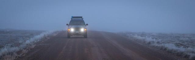 Light in the Fog