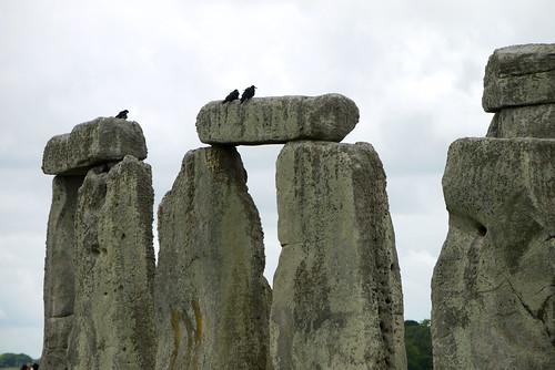 Stones & Crows