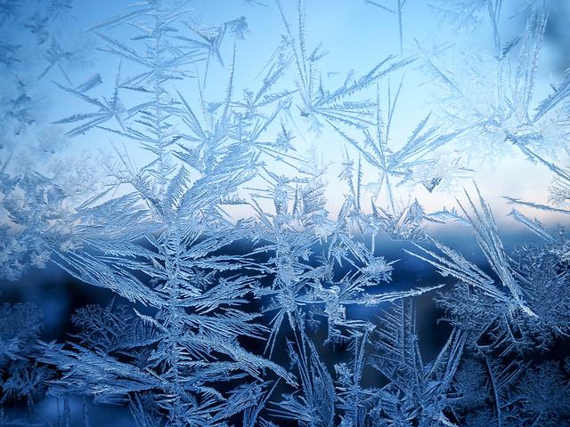P1050706.jpgSnowflakesonWIndowWInterFrozenSNow,Frost flower, ice crystal, arctic mesh, frost, snowflake.kuurankukka, jääkide, jääkukka, huurre, lumikide, lumihiutale, jäätynyt lumi, jäätynyt ikkuna, frozen window, icy window, jäinen ikkuna, talvi, winter, luonto, nature, helsinki, suomi, finland, kaunis, beautiful,