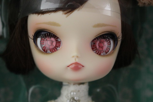 Dal Quince Face Up