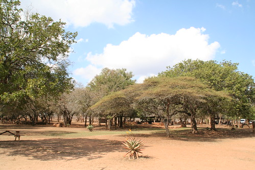 Grounds of Ndlovu Campground in Hlane
