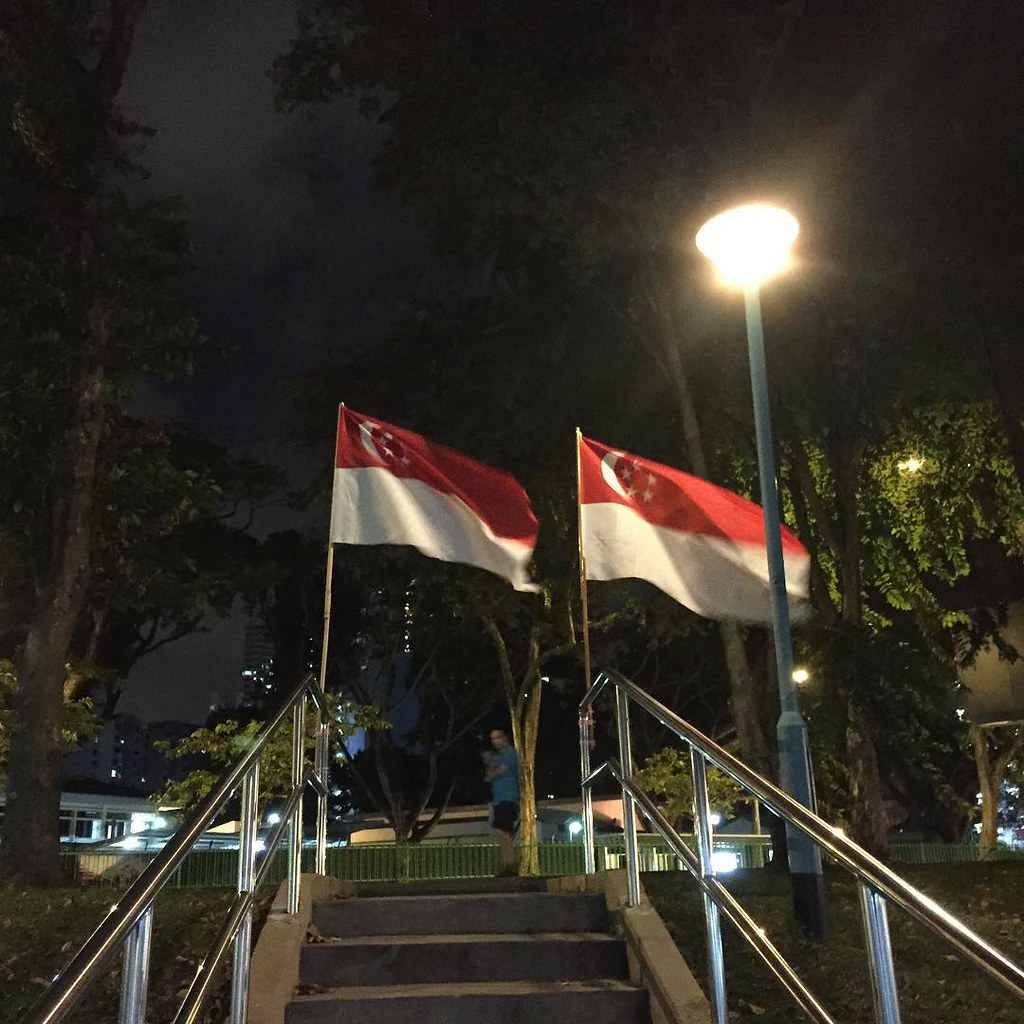 Nochyet National Day, yet flags haranguing me everywhere #SG50 #sg50zzz #Singapore #windynight #MajulahSingapura #Singaporeflag #thisishometruly