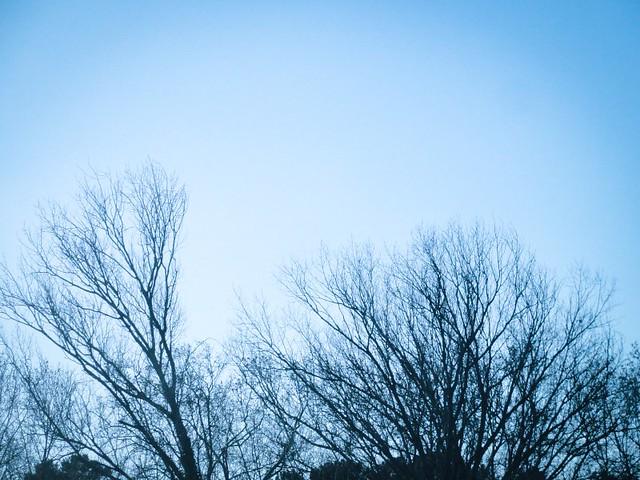 December skies
