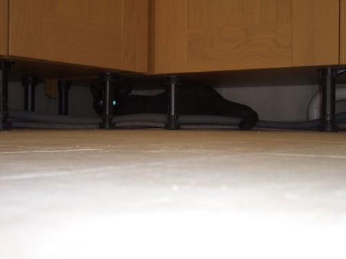Underside Of Kitchen Sinks