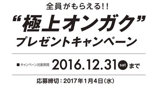 スクリーンショット 2016-12-21 19.43.11