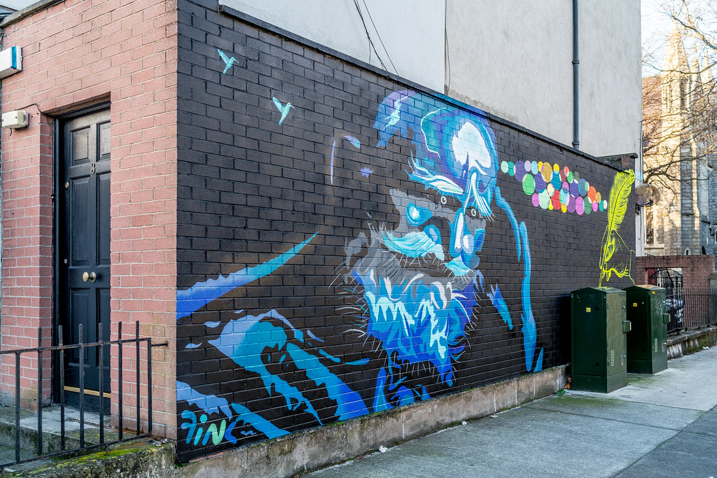 STREET ART ON SYNGE STREET [OFF THE SOUTH CIRCULAR ROAD]-124155