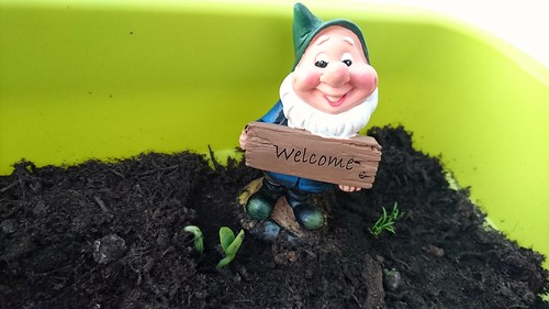 June 2016 - Welcome New Beginnings - Liz Hardwick