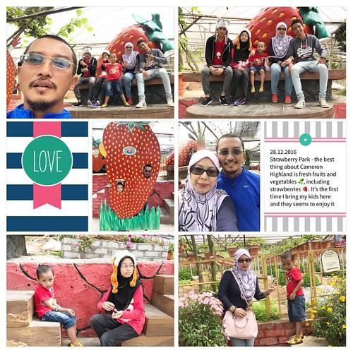 Strawberry-Park
