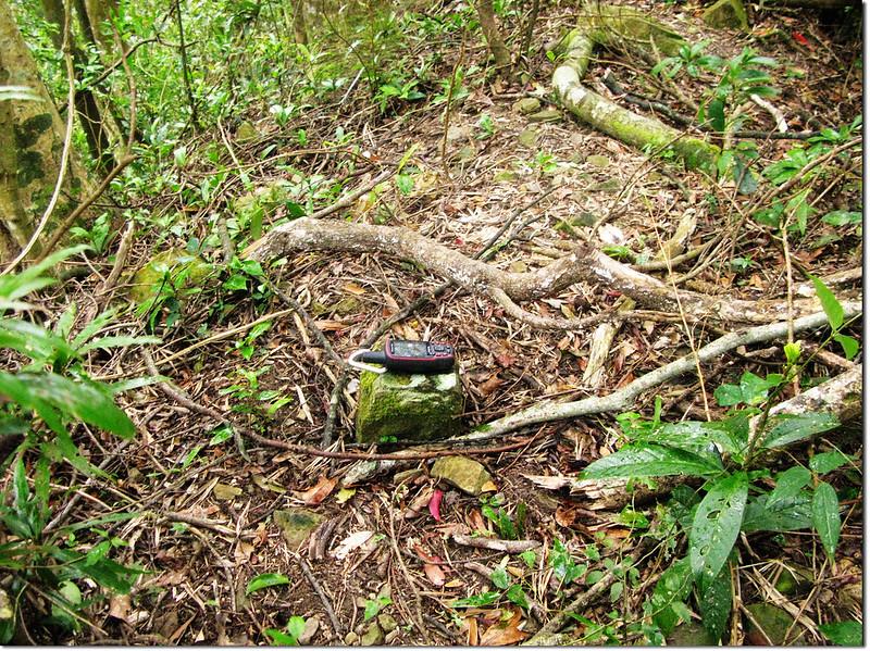拉號山步道自然石 1