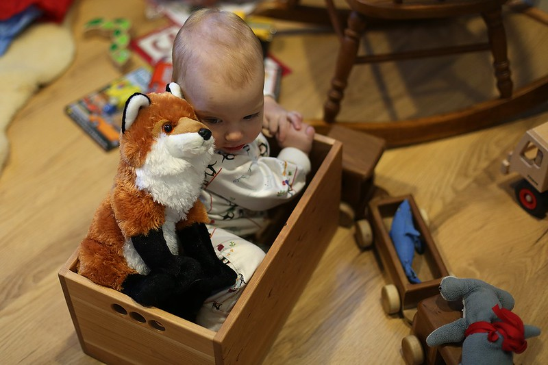 baby and a fox in a box