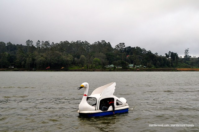 Boating at Lake Gregory Nuwara Eliya