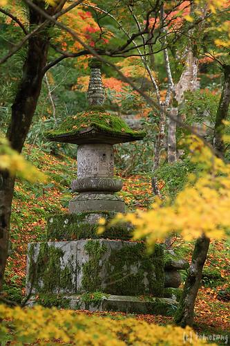 Komyozenji Temple
