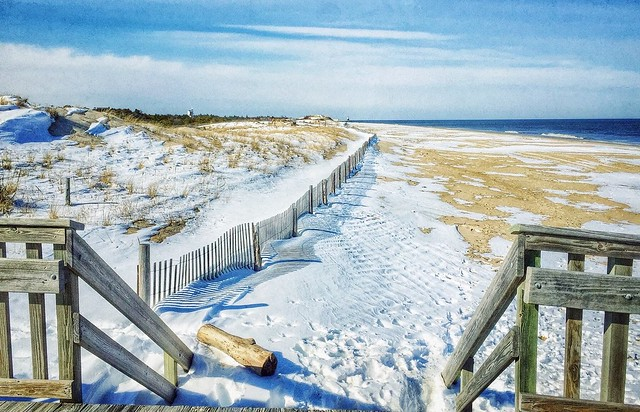 Snow on beach Cape Henlopen State Park
