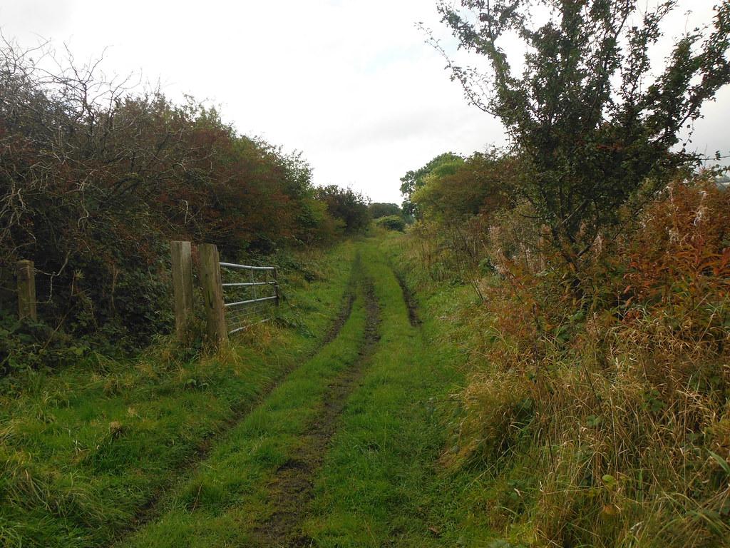 Old Railway 11