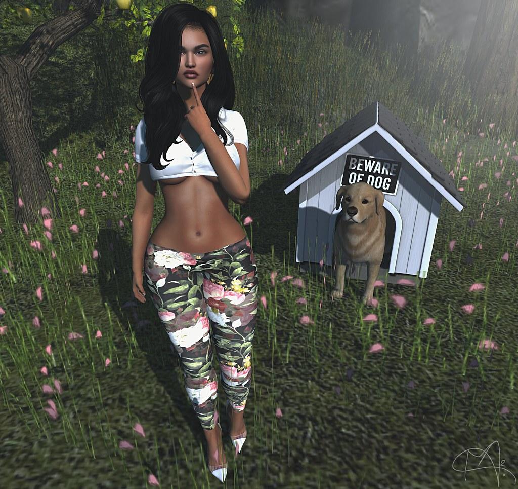 # Mili # 3134