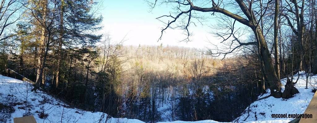 Bronte Creek 05
