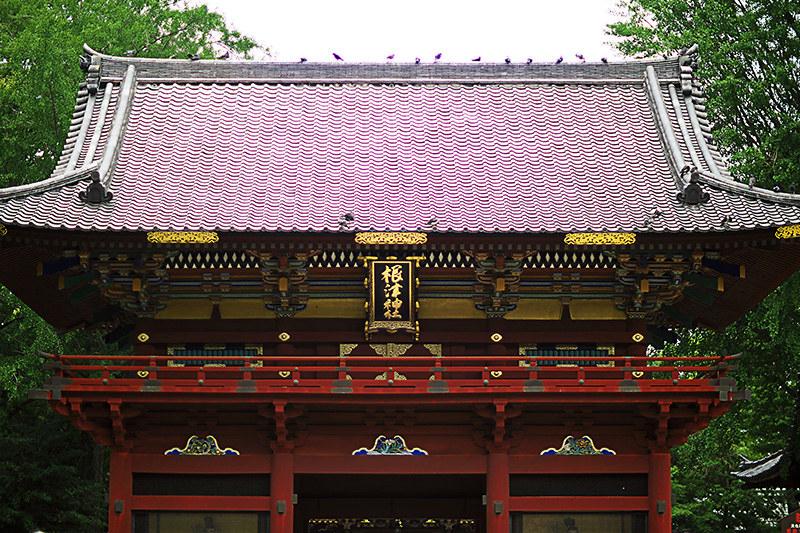 文京区 根津神社