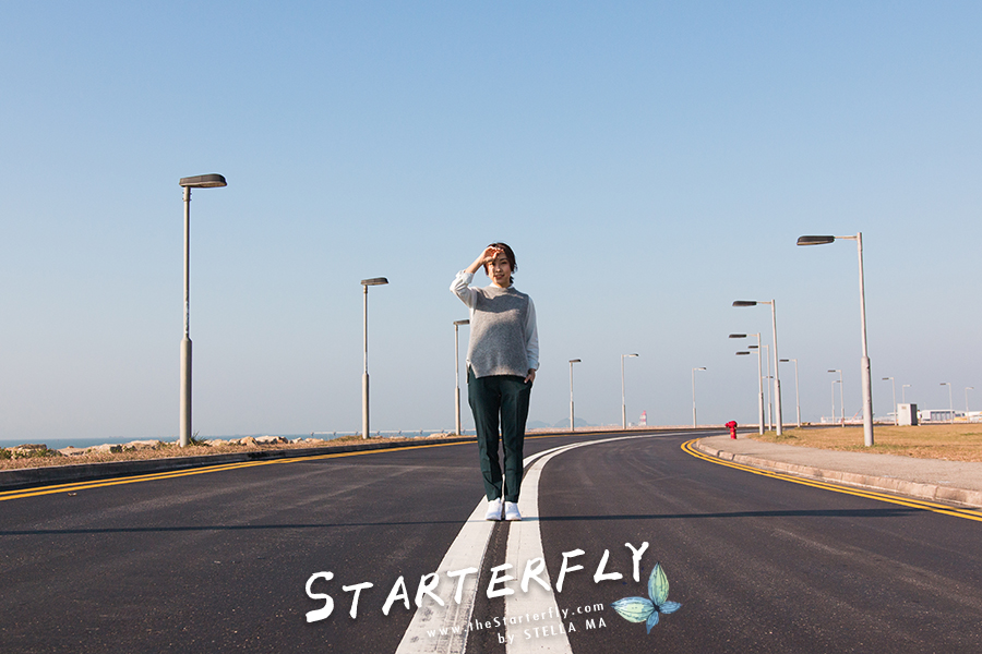stellama-fearless-3