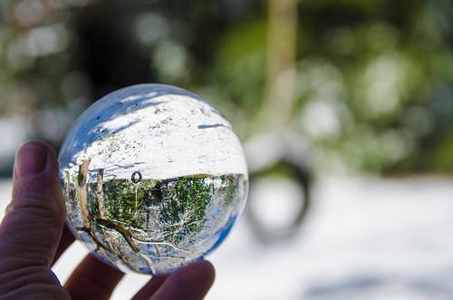 Snow Globe (4 of 31)