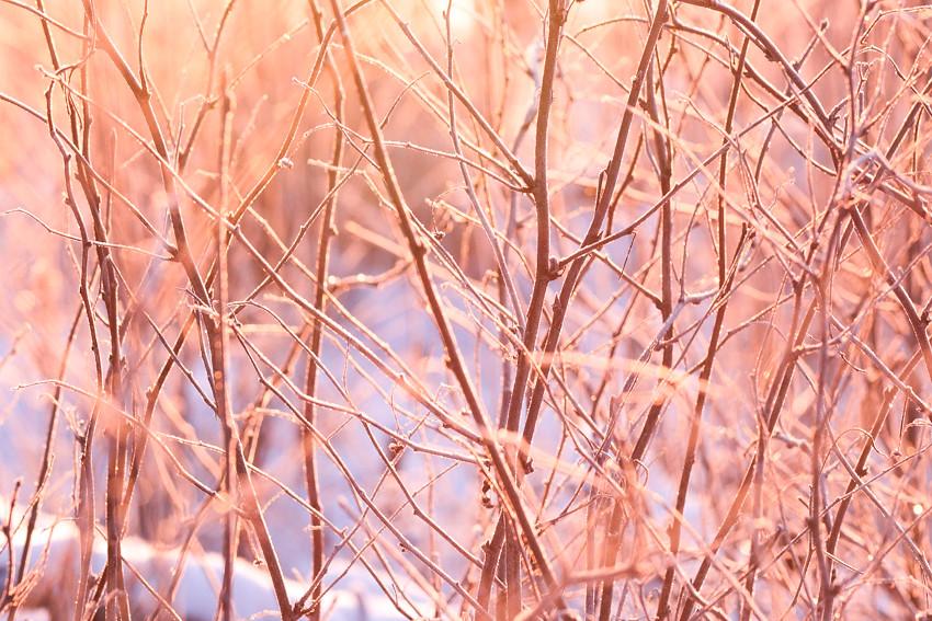 auringonlasku-2516