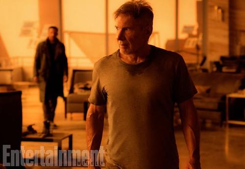 Blade Runner 2049 (2017).Harrison Ford