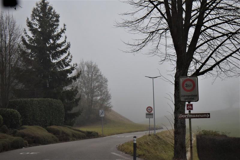 Feldbrunnen to Langendorf 21.12 (9)